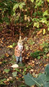 Model of Peter Rabbit in a garden in York