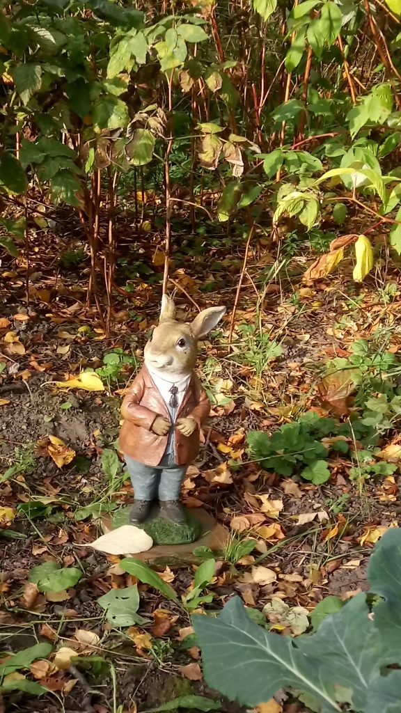 Model of Peter Rabbit in a garden in York