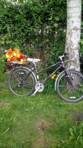 Bike with purple frame on grass leaning on tree